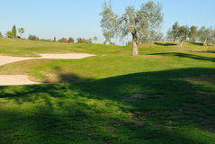 Bunkers and olives Royalty Free Stock Photos