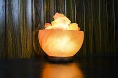 Bunkestora bitar saltar lampan | Himalayan salta royaltyfria foton