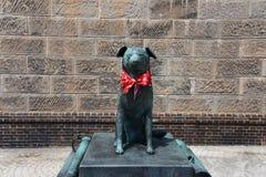 Bunkou dog statue near Otaru canal. Royalty Free Stock Images