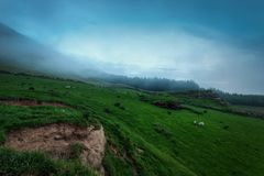 Bunnet Stane United Kingdom. Taken in 2015 taken in HDR Stock Images