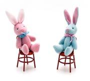 bunnies έδρες στοκ φωτογραφία
