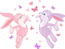 bunnies βαλεντίνος Στοκ εικόνα με δικαίωμα ελεύθερης χρήσης