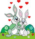 Bunnies ερωτευμένα Στοκ εικόνα με δικαίωμα ελεύθερης χρήσης