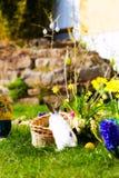 Bunnies Πάσχας στο λιβάδι με το καλάθι και τα αυγά Στοκ Εικόνες