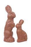 bunnies Πάσχα Στοκ Φωτογραφία