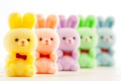 bunnies Στοκ φωτογραφία με δικαίωμα ελεύθερης χρήσης