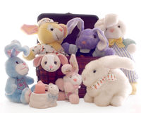 Bunnies in a Basket Stock Photography