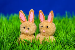Bunnies in basket Stock Image