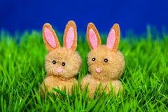 Bunnies in basket Stock Image