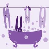 Bunnies in bathroom Stock Photo
