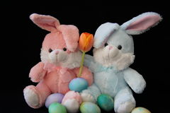Bunnies, Easter eggs and a tulip. Stock Photos