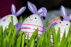 Bunny eggs in grass royalty free stock photography