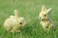 Bunnies in the garden Stock Photography