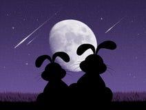 Bunnies looking the shooting stars stock illustration