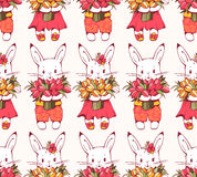 Bunnies Royalty Free Stock Image