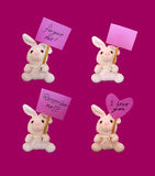 bunnies with tags royalty free stock photography