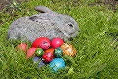 bunny αυγά Πάσχας Στοκ εικόνες με δικαίωμα ελεύθερης χρήσης