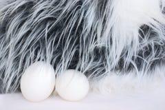bunny αυγά Πάσχας Στοκ εικόνα με δικαίωμα ελεύθερης χρήσης