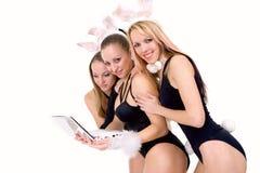 bunny αυτιά που απομονώνονται playgirls προκλητικά τρία Στοκ Εικόνες