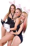 bunny αυτιά που απομονώνονται playgirls προκλητικά τρία Στοκ Εικόνα