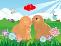 bunny βαλεντίνος ζευγών Στοκ Εικόνες