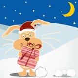 bunny γενεθλίων χαριτωμένος ευτυχής καρτών Στοκ εικόνα με δικαίωμα ελεύθερης χρήσης