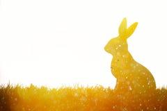 bunny λιβάδι Πάσχας Στοκ εικόνα με δικαίωμα ελεύθερης χρήσης