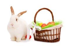 Bunny και καλάθι Πάσχας Στοκ φωτογραφία με δικαίωμα ελεύθερης χρήσης