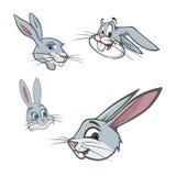 bunny κεφάλια Στοκ Εικόνα