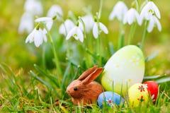 bunny λιβάδι αυγών Πάσχας snowdrops Στοκ φωτογραφία με δικαίωμα ελεύθερης χρήσης