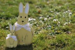 bunny λιβάδι Πάσχας Στοκ Εικόνα