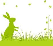 bunny λιβάδι Πάσχας ελεύθερη απεικόνιση δικαιώματος