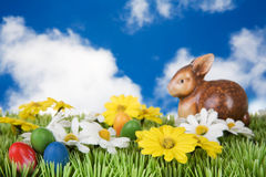 bunny λιβάδι Πάσχας Στοκ Φωτογραφία