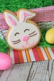 Bunny Πάσχας μπισκότο Στοκ Εικόνες