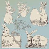 Bunny Πάσχας Στοκ Εικόνες
