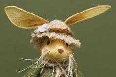 Bunny Πάσχας στοκ εικόνες με δικαίωμα ελεύθερης χρήσης