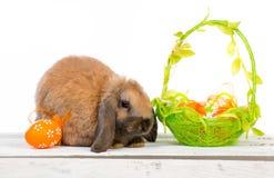 bunny Πάσχα καλαθιών Στοκ εικόνα με δικαίωμα ελεύθερης χρήσης