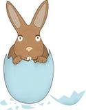bunny Πάσχα Στοκ εικόνες με δικαίωμα ελεύθερης χρήσης