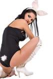 bunny προκλητικό Στοκ Εικόνες