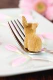 bunny τιμή τών παραμέτρων θέσεων Πά&sigm Στοκ Εικόνα