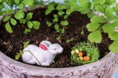 bunny χαιρετισμός Πάσχας καρτών Στοκ εικόνες με δικαίωμα ελεύθερης χρήσης