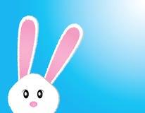 bunny χαριτωμένο Στοκ Φωτογραφία