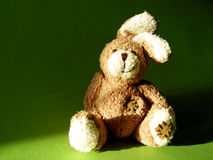 Bunny 1. Fluffy toy Stock Photography