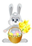 Bunny. Easter bunny with daffodils and easter basket vector illustration
