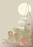 Bunny. Flowers,moon for postcard Royalty Free Stock Photography