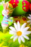 bunny αυγά Πάσχας που χρωματίζονται Στοκ Εικόνες