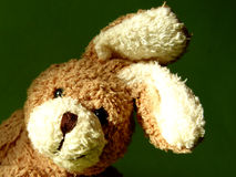 Bunny 3. Fluffy toy Stock Images