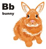 Bunny and abc. Orange bunny sit near of black abc Stock Image