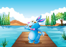 A bunny above the wooden bridge at the river Stock Images