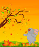 bunny with autumnal leaves Royalty Free Stock Photography